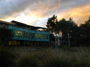 library-dusk