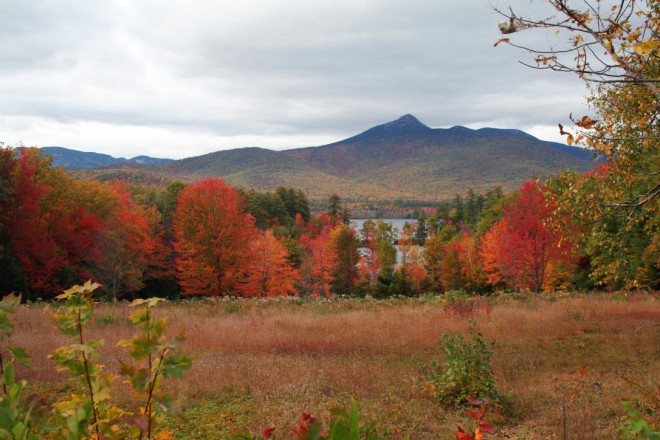 New Hampshire trees at their autumnal best