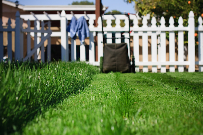 Photo of a mowed lawn and lawn mower
