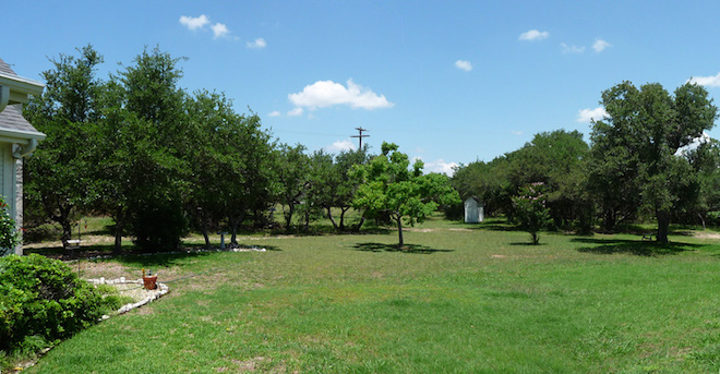 Photo of the backyard of the Boerne House.