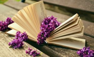 An open book with lilac flowers overflowing from it.