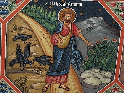 Parable of the Sower: Learning to Follow