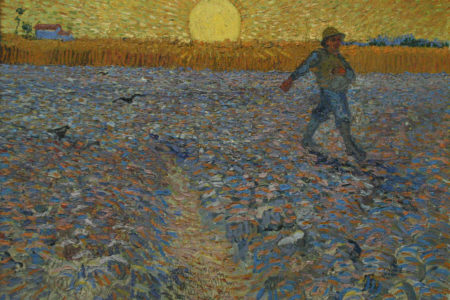 Parable of the Sower: A Good Harvest