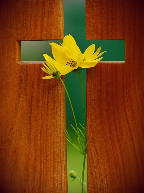 After the Stations of the Cross: An Easter Postscript