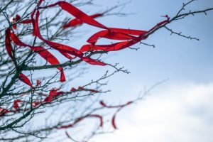 Red ribbons tied in the branches of trees fluttering towards the sky.