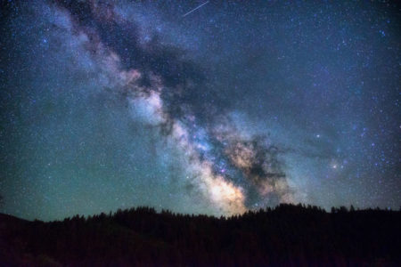 The organized and chaotic vision of a nebula in the night sky above the treeline.