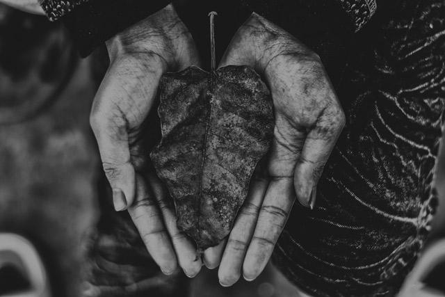 Generosity Inspires Gratitude… and Vice Versa!