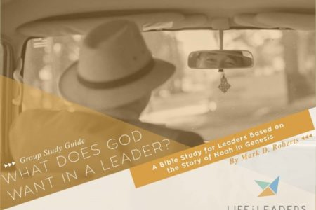 What Does God Want in a Leader? (Group Guide)