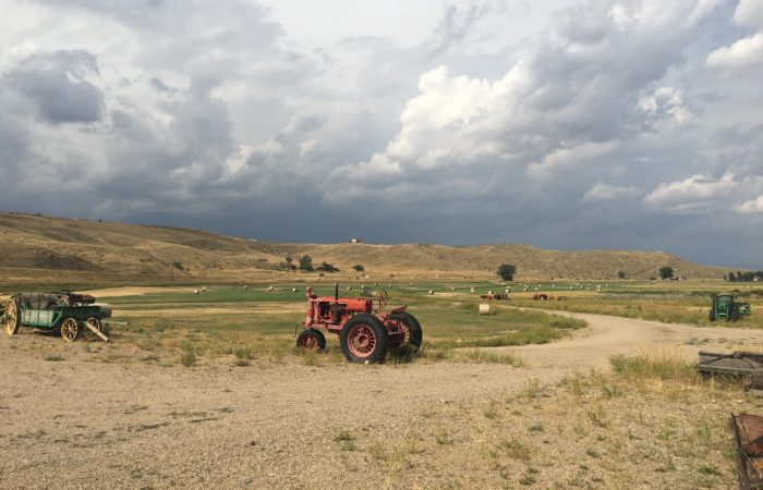 A tractor in the middle of a field