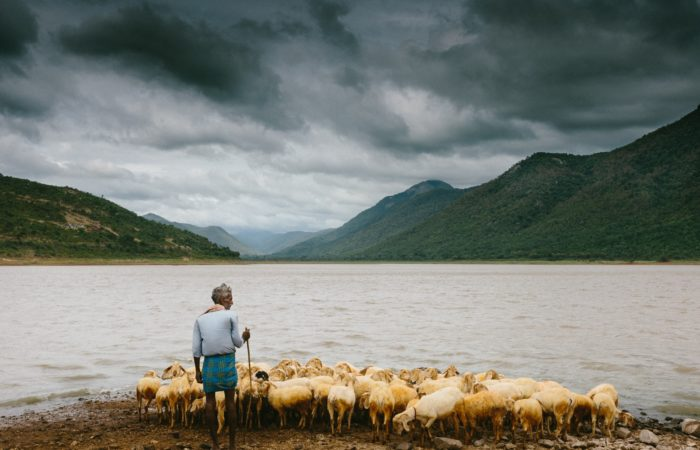 A shepherd with a flock of sheep at the foot of a mountain