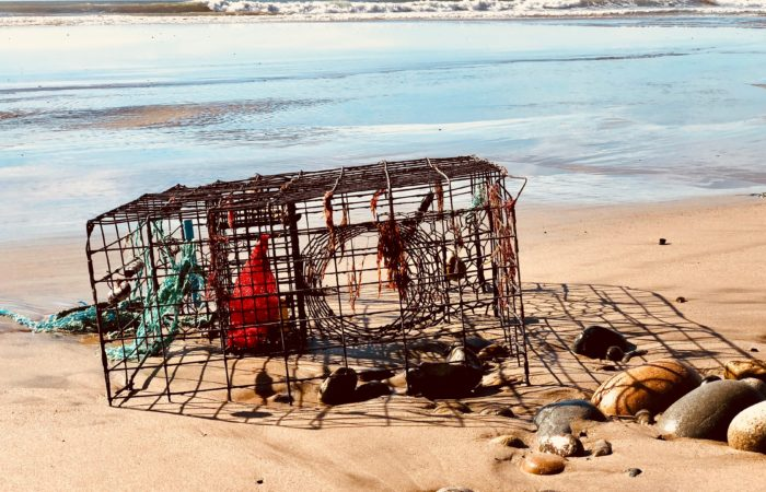 crab trap on beach
