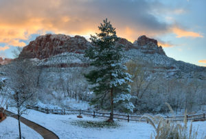 Photo of sunrise at Zion National Park. Copyright Mark Roberts.