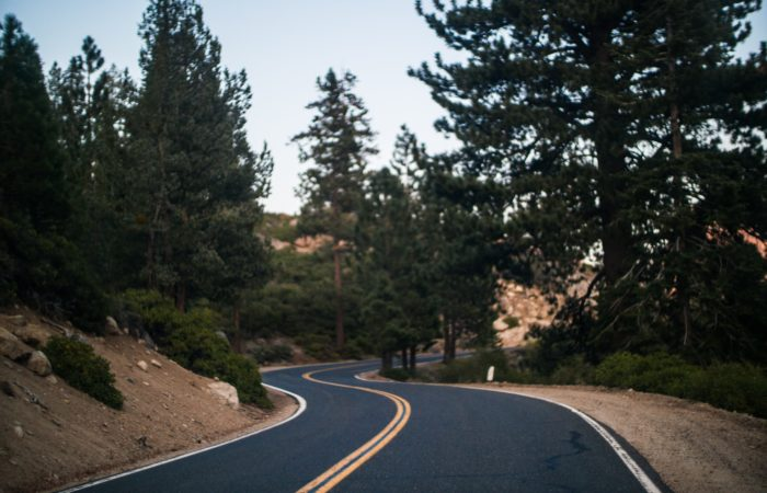 A road passing through trees in Yosemite National Park
