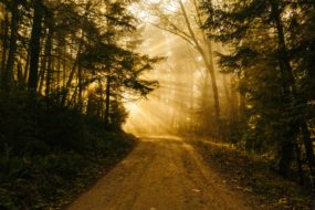 The Path of Life and the Fullness of Joy
