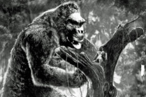 Why It Was Great for Me, a 63-Year-Old, to See Godzilla vs. Kong