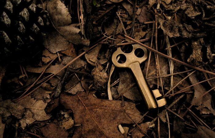 A key lying on the ground in the dirt and weeds