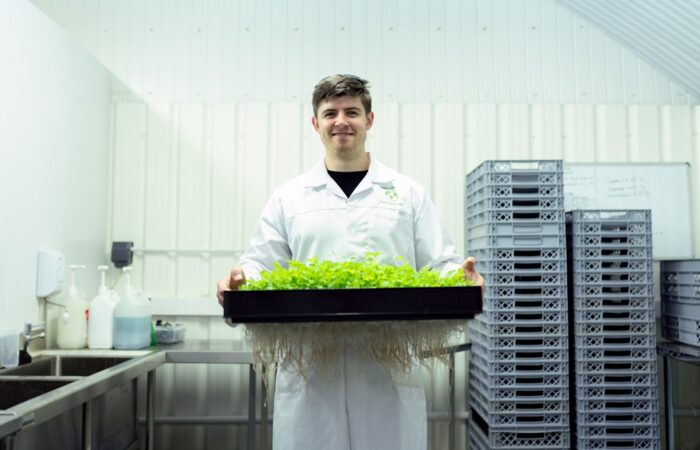 A man in an industrial lab holding a tray full of growing plants